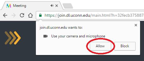Chrome Mic/Cam Access